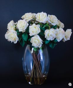 Cream Dutchess Roses in large glass vase - 70cm