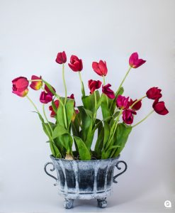 Red tall Tulips in antique vase - 70cm