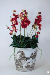 Red Orchid in beige vase - 53cm