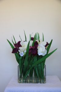 Purple + White German Iris in rectangular glass vase - 56cm