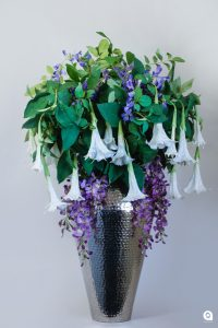 Purple Wisteria + white Datura in large silver vase - 99cm